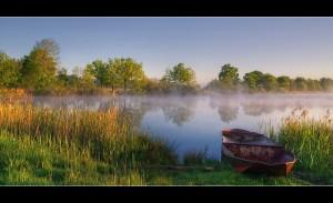 morgens-am-teich-e6963aef-d068-4ae9-b130-bf88ccd97548
