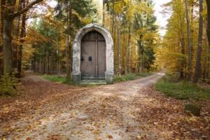 Alte-Tuer-im-Wald1_1